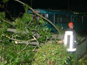 Umgestürzte Bäume blockieren den U-Bahnverkehr (Foto: Pressestelle Feuerwehr Frankfurt)