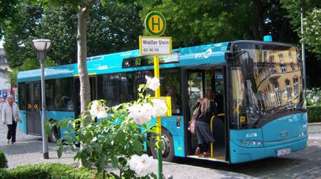 Dreitüriger Stadtbus an der Haltestelle Weisser Stein, im Vordergrund eine Rosenstrauch und ein Haltestellenschild